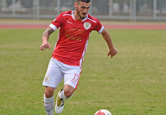 Marco Meireles tem sido um dos jogadores em destaque no Benfica
